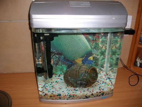 Aquarium Pump Jebo R338 Images