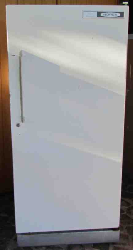 Fridge Amp Freezers Fridge Norge 135cm Tall X 60cm Wide X